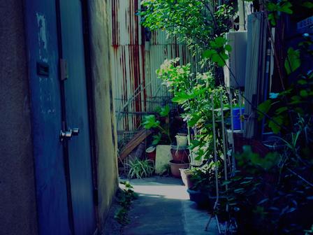 11お散歩1305.jpg
